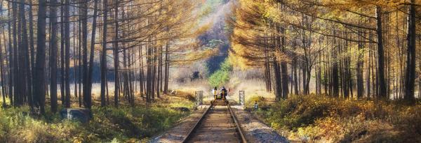 【【韓國近郊一日遊】 童話瑞士村、晨靜樹木園、江村鐵道自行車(首爾出發)