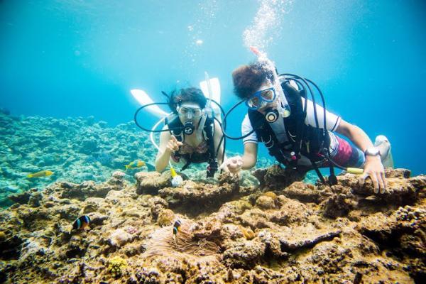 【【沖繩離島水上活動】慶良間 Chibishi 島潛水、浮潛半日遊(多語教練&免費接送)