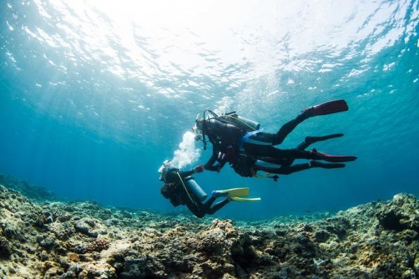 【【沖繩離島】慶良間諸島持照潛水一日遊(多語教練&免費接送)