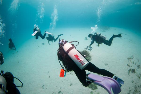 【【沖繩浮潛聖地】慶良間諸島潛水一日遊(多語教練 & 免費接送)