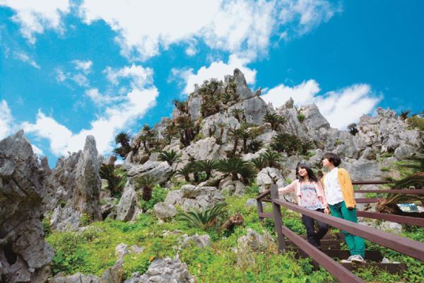 【【沖繩北部】邊戶岬、大石林山、美麗海水族館巴士一日遊
