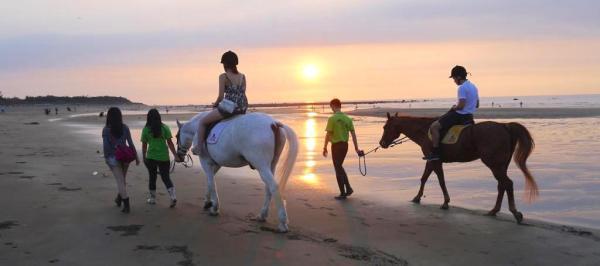 【【騎馬看淡水夕陽】淡水沙崙海灘浪漫騎馬體驗