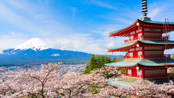 【【客製化行程】東京市區、富士山、箱根 10 小時包車服務