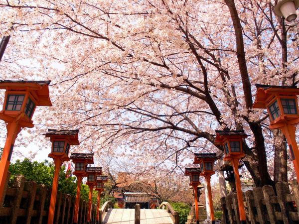 【【客製化行程】京都大阪 10 小時包車服務