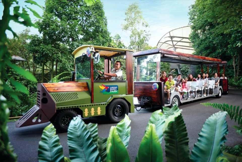 【超值優惠】新加坡裕廊飛禽公園門票 Jurong Bird Park