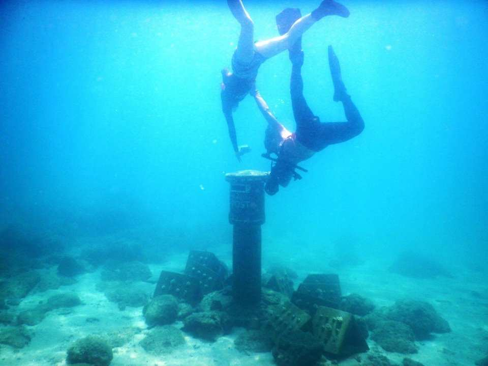 【日本語OK!】台湾・澎湖(ポンフー)・シュノーケリング/体験ダイビングプラン