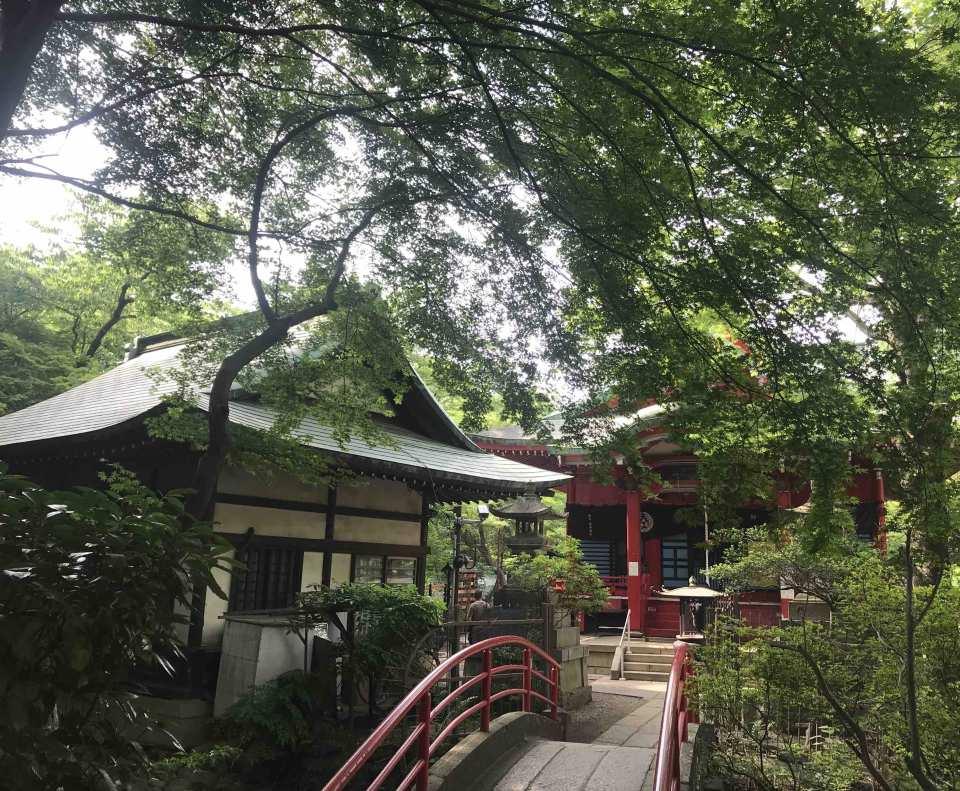 【保證入園】東京三鷹之森吉卜力美術館、井之頭公園