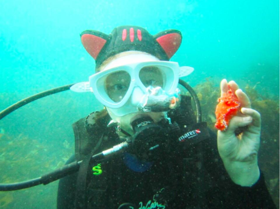 【探索海底世界】濟州島潛水體驗
