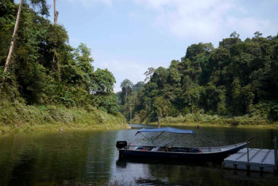 【馬來西亞霹靂生態之旅】Temenggor 自然保護區、天猛莪湖、當地村莊、Nam 瀑布