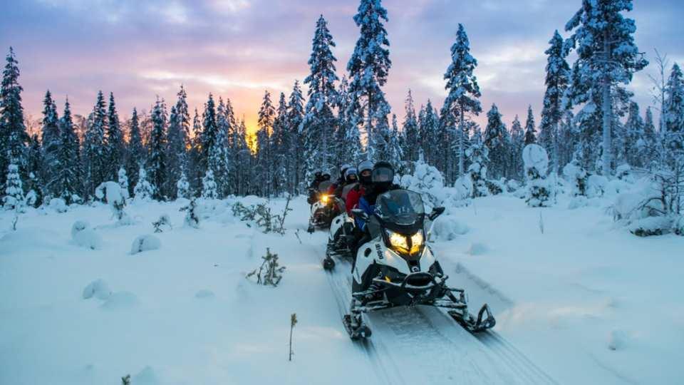 【芬蘭雪橇及野生動物探險之旅】雪橇摩托車+哈士奇雪橇+馴鹿雪橇