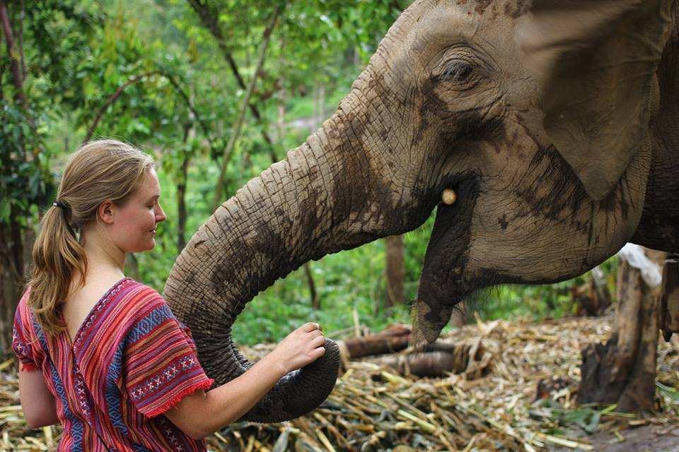 【Elephant Jungle Sanctuary】清邁大象友善一日體驗營