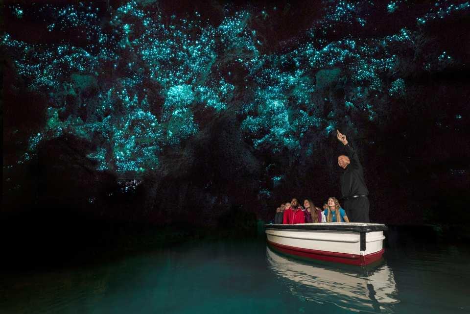 【紐西蘭北島必去景點】懷托摩藍光螢火蟲洞遊船體驗(奧克蘭 / 羅托魯阿出發)