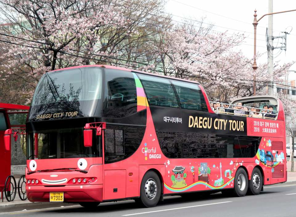 Korea Daegu City Tour Bus Day Ticket
